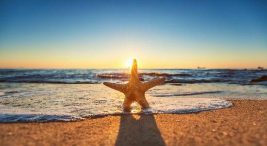 Пляжный отдых на море 2019